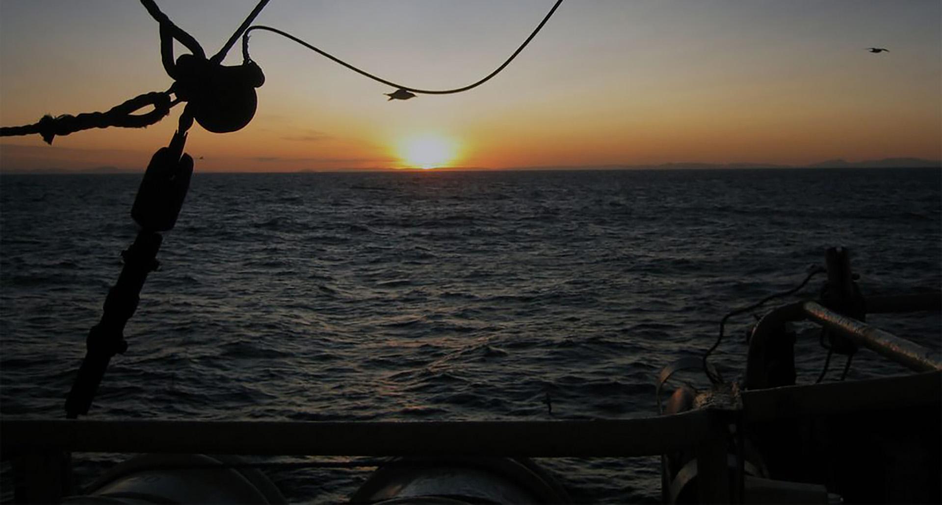 Морское агентство «НАВИСОЛИС»